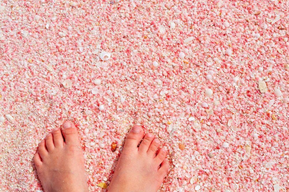 Barbuda-2-Pink-Sand