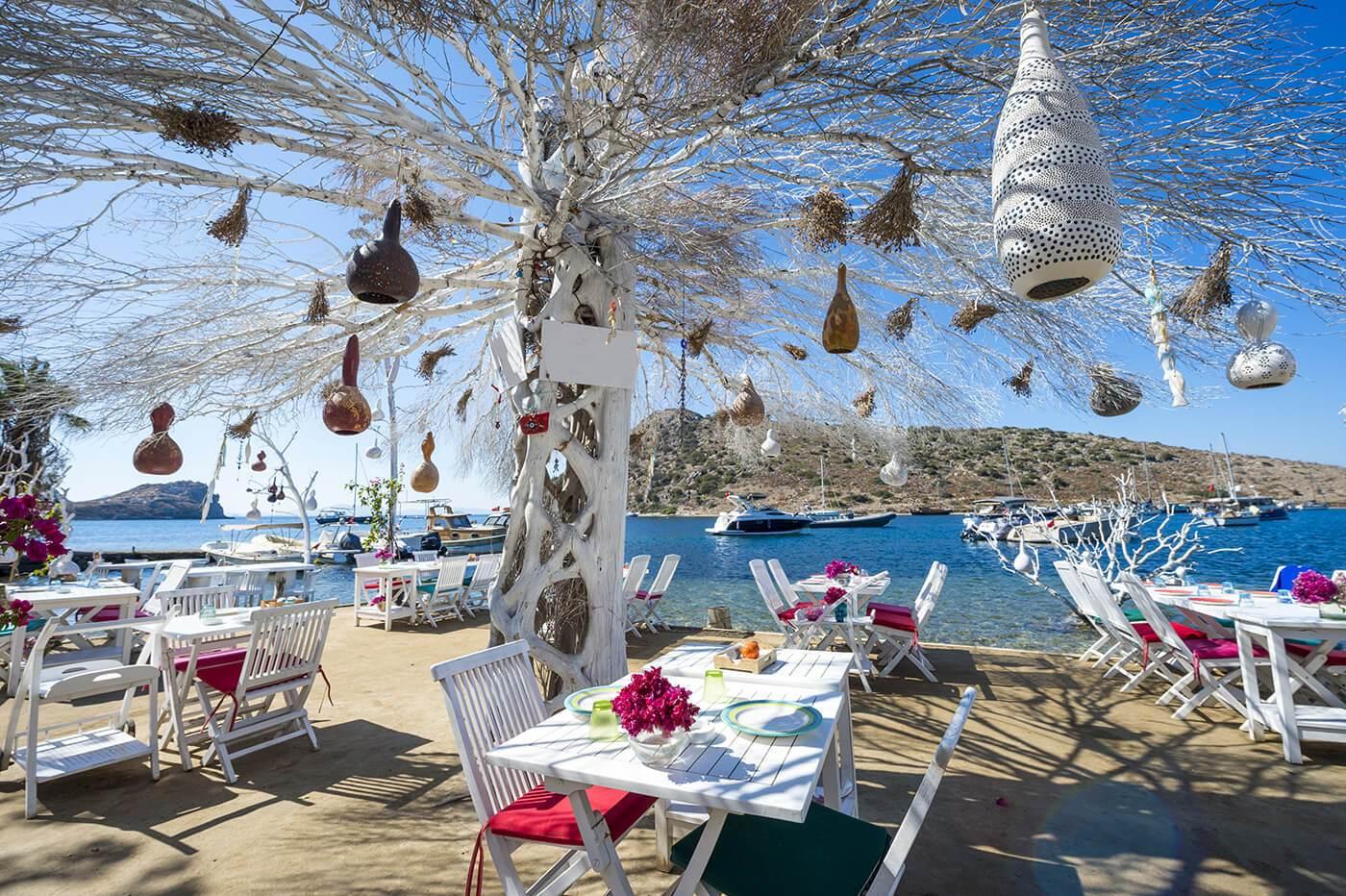 Informal beachside seating with decorative tree in a scenic tourist village near Bodrum, Turkey